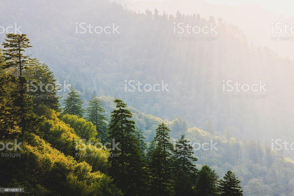 Sun Kissed Mountain stock photo