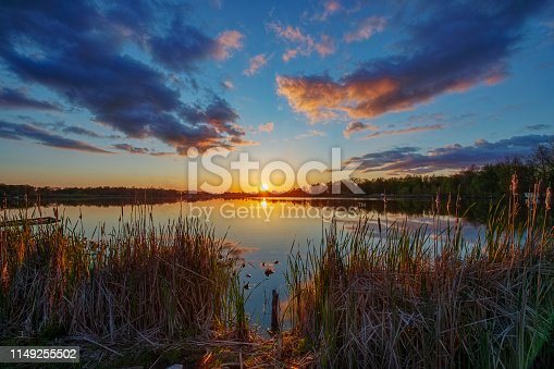 Sun on Horizon over Quiet Water through Cattails at Sunset