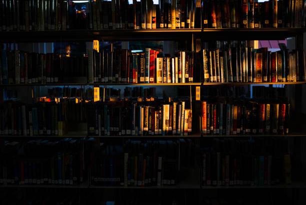 Sonne über die Bücher – Foto