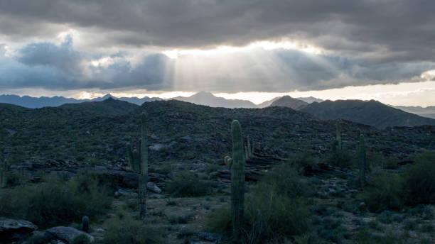 Sun rays over a desert scene stock photo