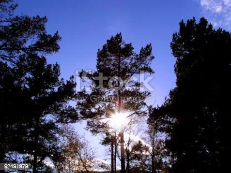istock Sun rising 92491979