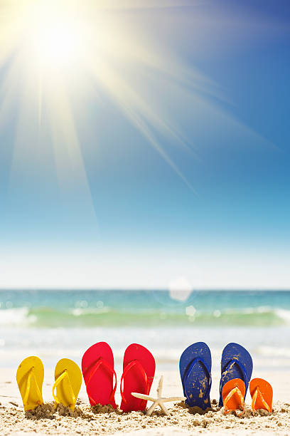 Sun, sea, sand, and sandals: it's family vacation time! Time for a seaside holiday for the whole family! Two pairs of adult flipflop rubber sandals and two in children's sizes sit on a sandy beach with calm sea in the background. Radiating lens flare off the hot, summer sun and copy space on the sky. animal family stock pictures, royalty-free photos & images