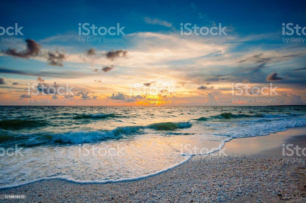 Sun, Seafoam, Shells stock photo