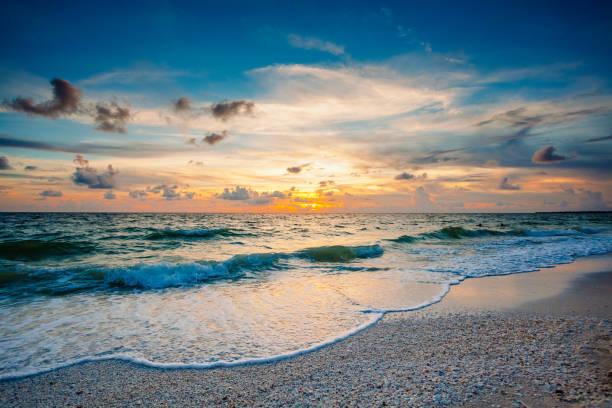sonne, seafoam, muscheln - golfküstenstaaten stock-fotos und bilder