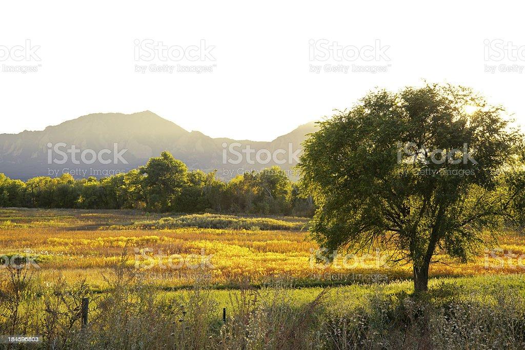 Sun Setting Over Boulder Colorado Open SPace royalty-free stock photo