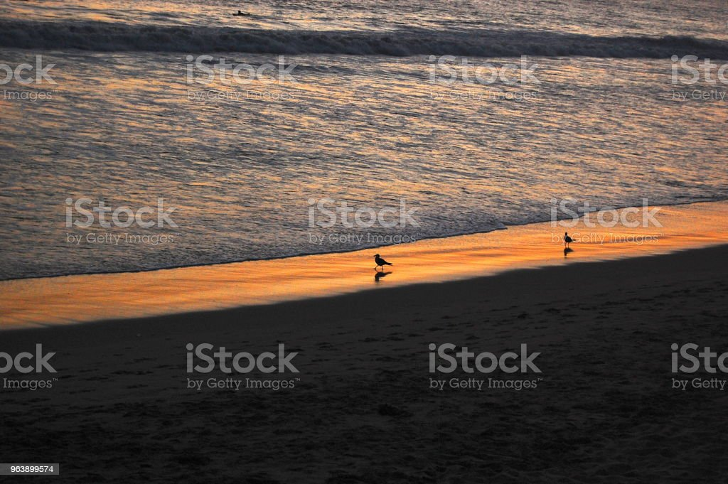 Sun Setting Over The Beach - Royalty-free Above Stock Photo