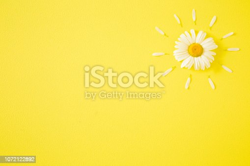 Sun shape created from fresh white daisy on bright yellow background. Wild flower. Greeting card. Mockup for positive idea. Empty place for inspirational, happy, cute text, quote or sayings. Top view.