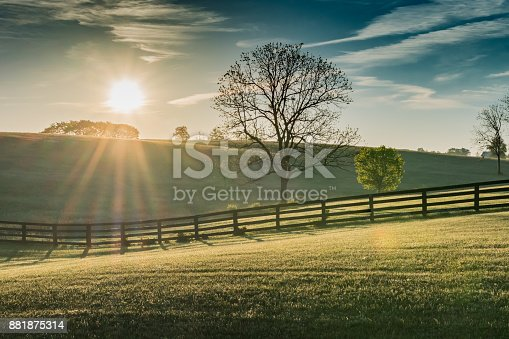 Sun Shines Over Rolling Kentucky Field at Dawn