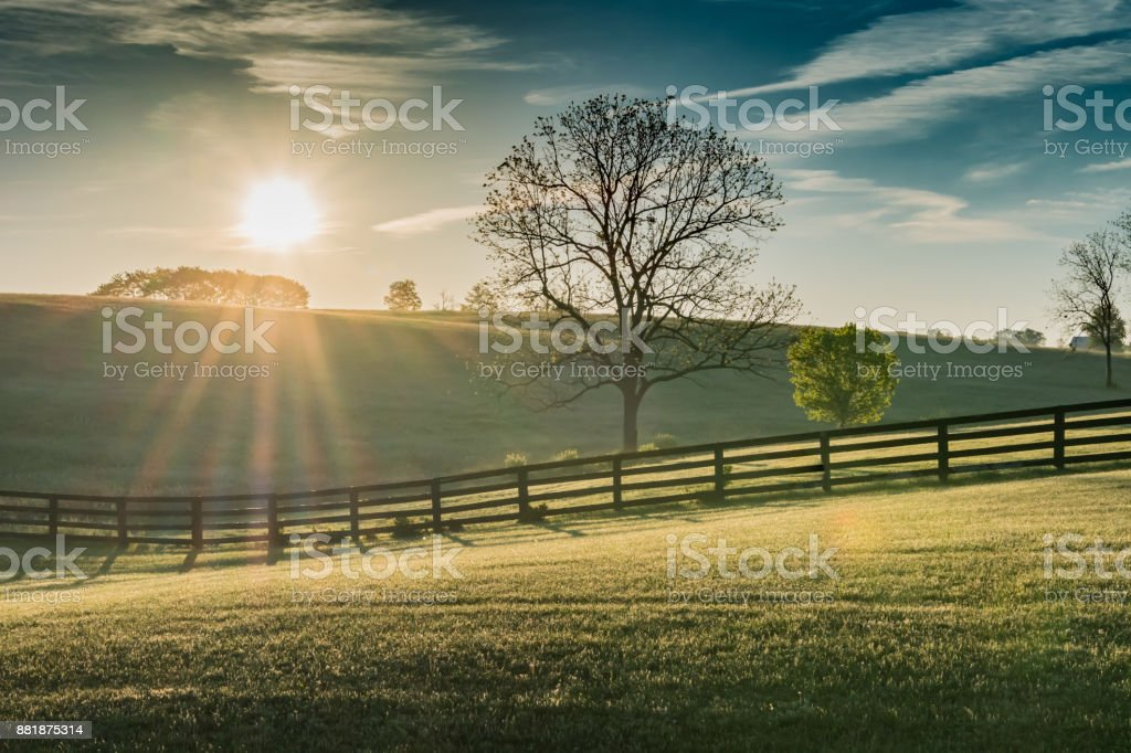 Sun Shines Over Rolling Kentucky Field stock photo