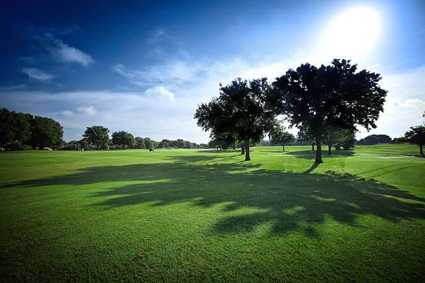 sun shining on golf fields - backlit with shadows - golf sommar skugga bildbanksfoton och bilder