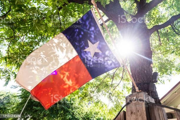 Photo of Sun Shining Through Tree Backlighting Lone Star State Flag in Austin Texas USA