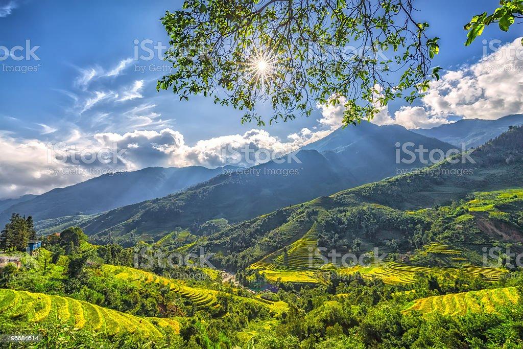 Sun Sterne-plateau frühen in Sapa, Lao Cai, Vietnam – Foto