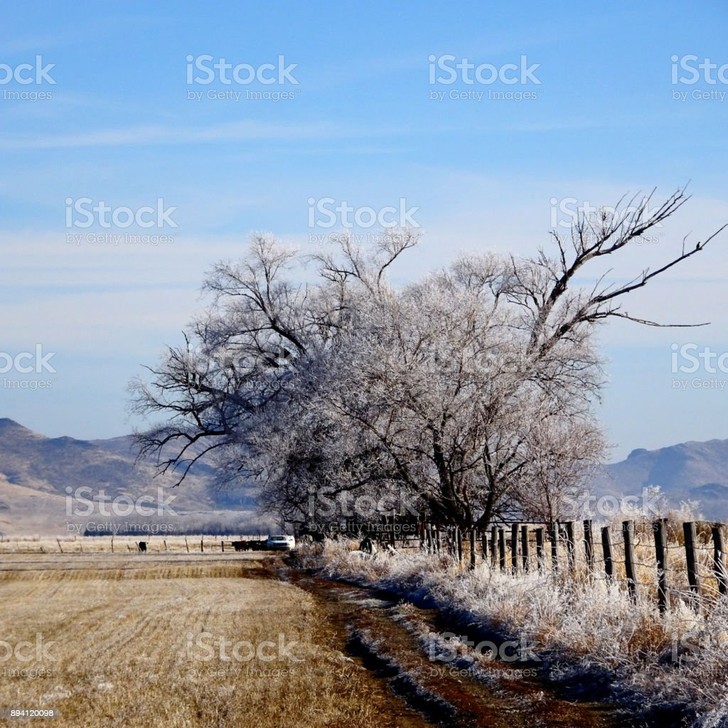 Sun Valley area Early Winter stock photo