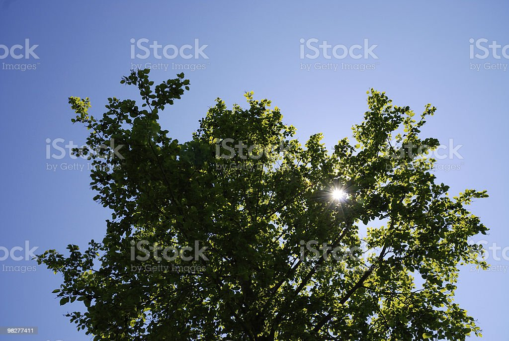 Sun with star-shaped rays royalty-free stock photo