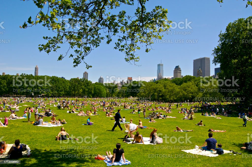 Sunbathers at Central Park Sheep Meadow in Spring, Manhattan, NYC royalty-free stock photo