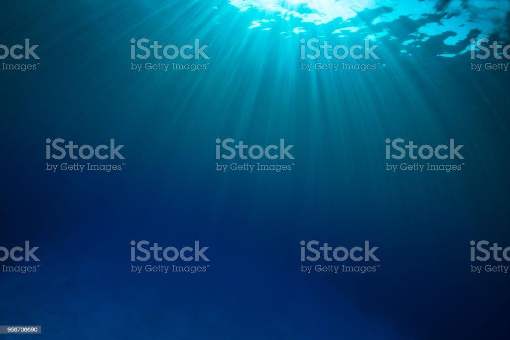 Sunbeam, Caribbean Sea stock photo