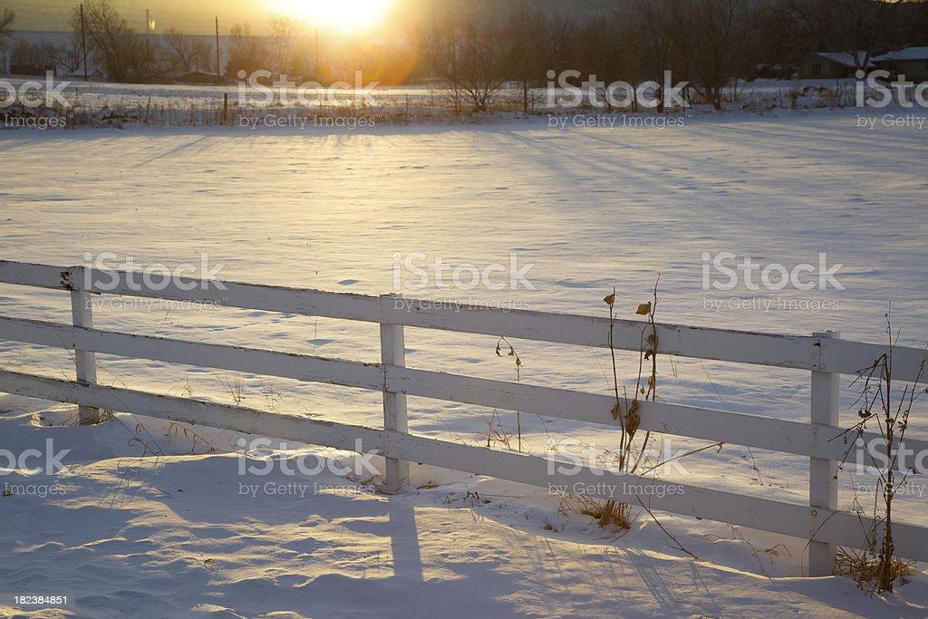 Sunbeam on a winter pasture stock photo