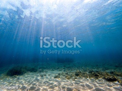 665352250 istock photo Sunbeam, under the sea 1254942875