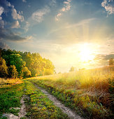 Sunbeams and country road in the autumn