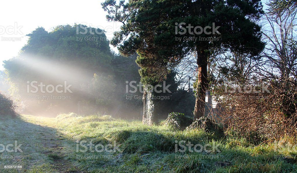 Sunbeams On Forgotten Graves zbiór zdjęć royalty-free