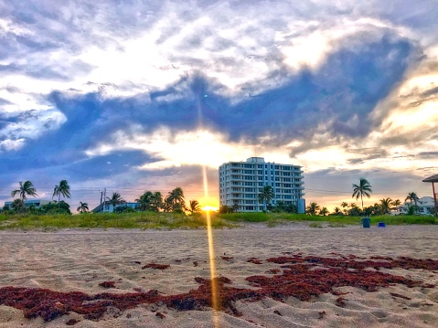 sunbeams on the beach at sunset