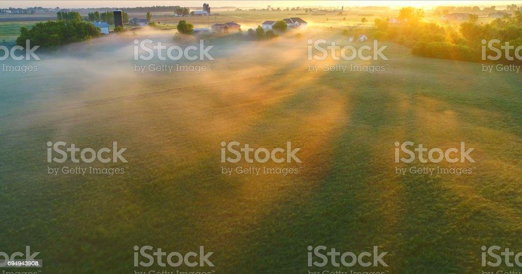 Sunbeams through ground fog in Springtime fields stock photo