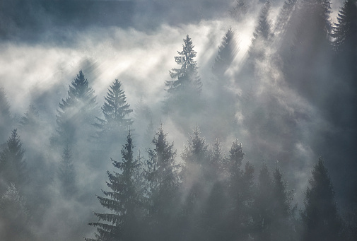 Horizontal shot of foggy mountain scenery in Romania, sunrays coming through