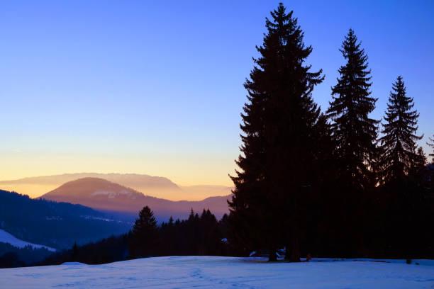 Sundown in winter snowy forest, beautiful landscape stock photo