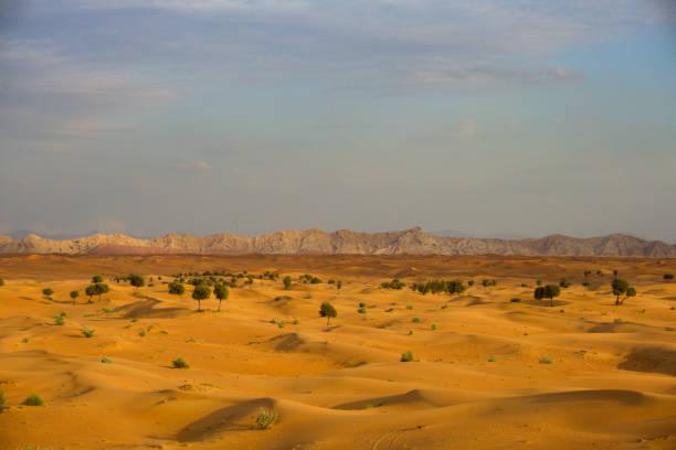 Sonnenuntergang über der Wüste – Foto