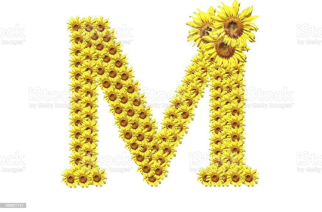 'M' sunflower alphabet royalty-free stock photo