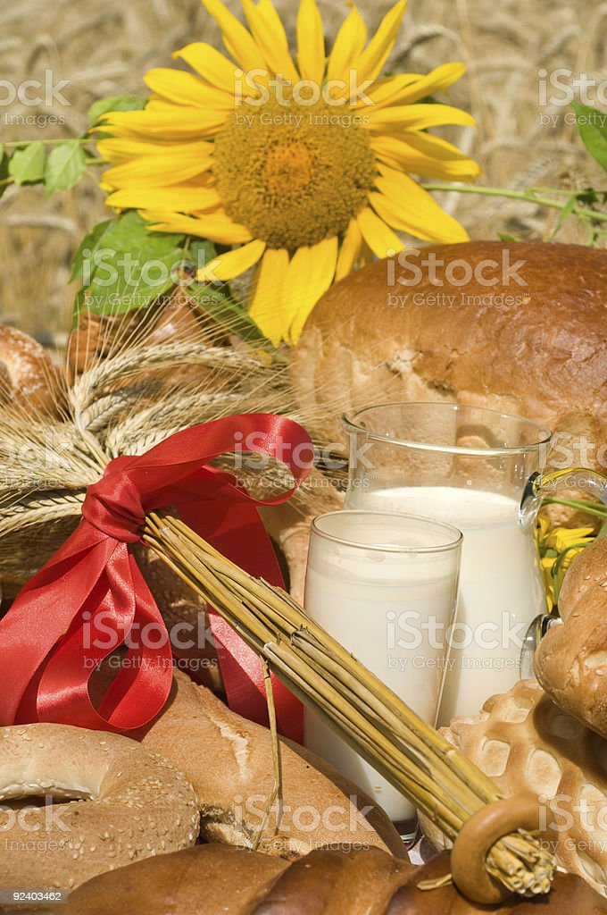 Sunflower and bread. royalty-free stock photo