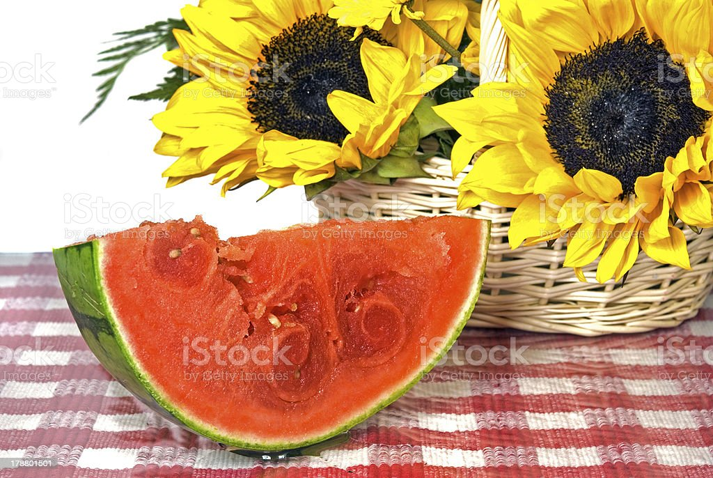 sunflower and watermelon slice royalty-free stock photo