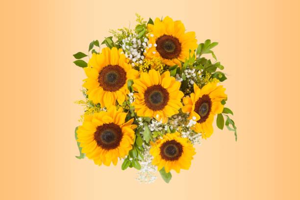 Sunflower bouquet isolated on white background picture id1062708892?b=1&k=6&m=1062708892&s=612x612&w=0&h=v2piokyszzouvaesfyvmowfjivnl2ilqwzv4vz8pnww=