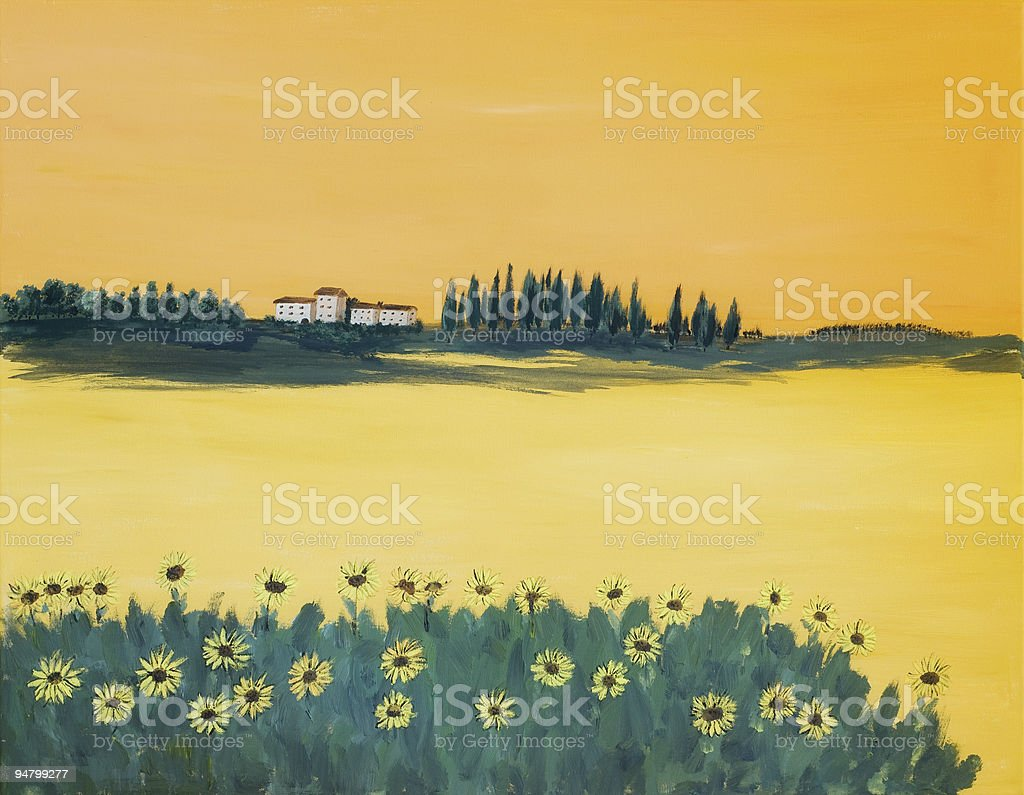 Sunflower Field in Tuscany royalty-free stock photo