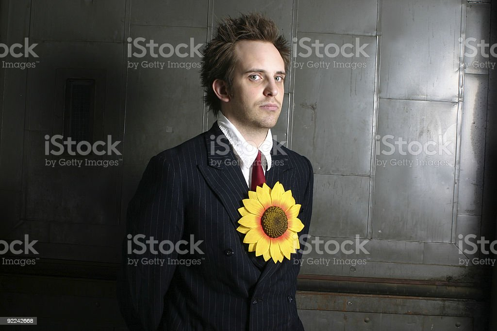 Sunflower Guru royalty-free stock photo