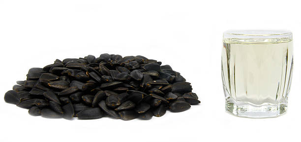 sunflower seed isolated stock photo