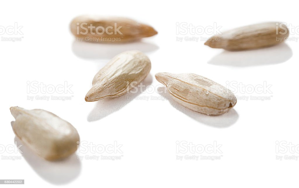 Sunflower Seeds Close up Isolated stock photo