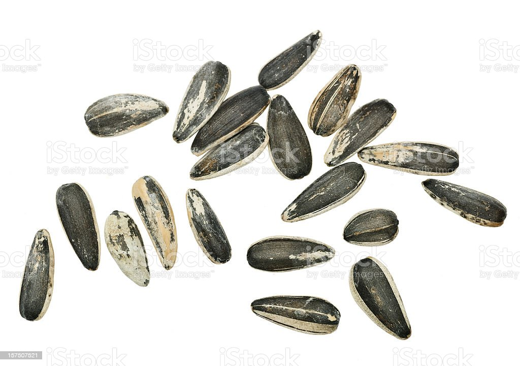Sunflower seeds from above stock photo