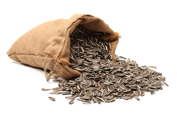 Sunflower seeds in burlap sac stock photo