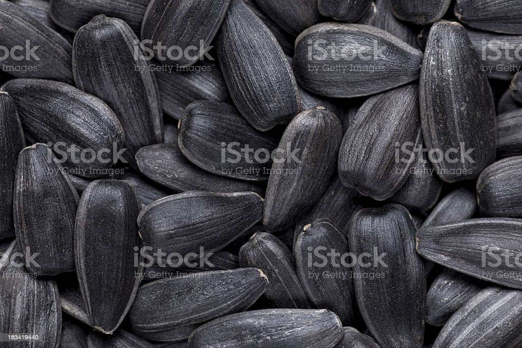 Sunflower seeds. royalty-free stock photo