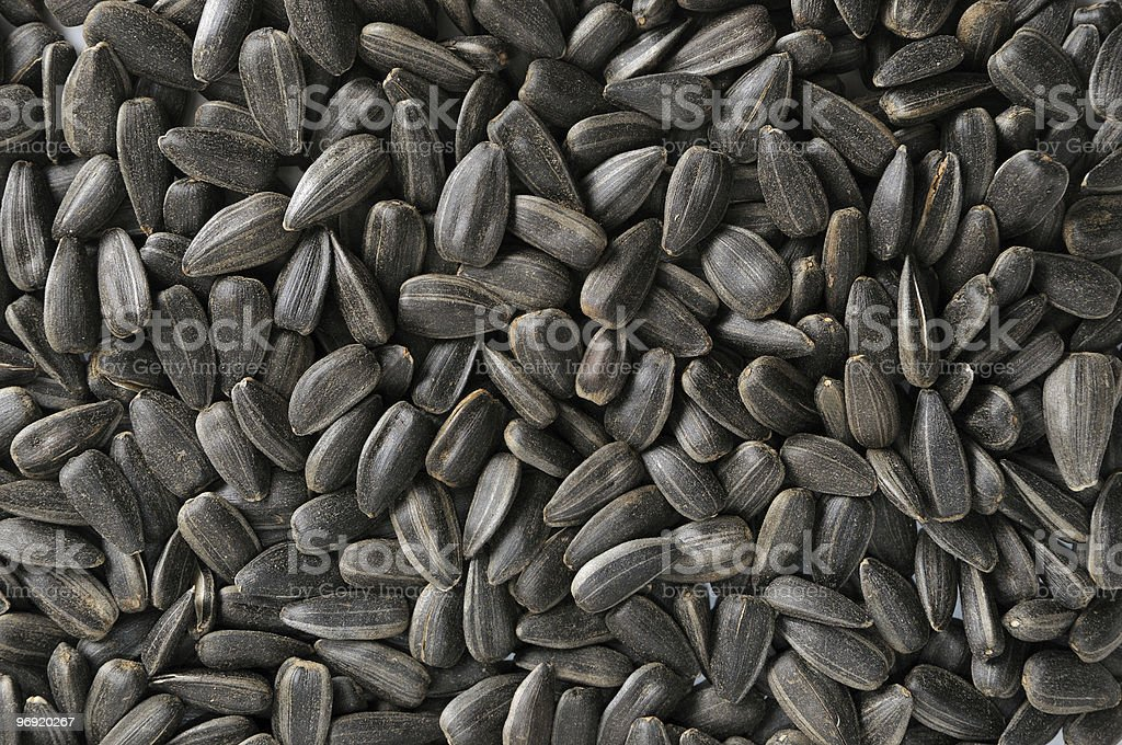 sunflower seeds royalty-free stock photo
