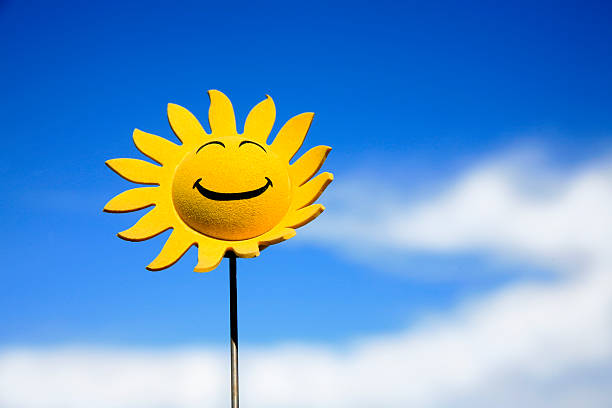 Tournesol smiley - Photo