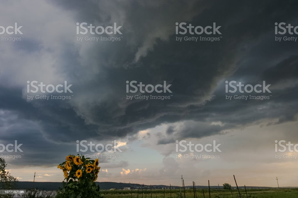 A supercell is a thunderstorm characterized by the presence of a...