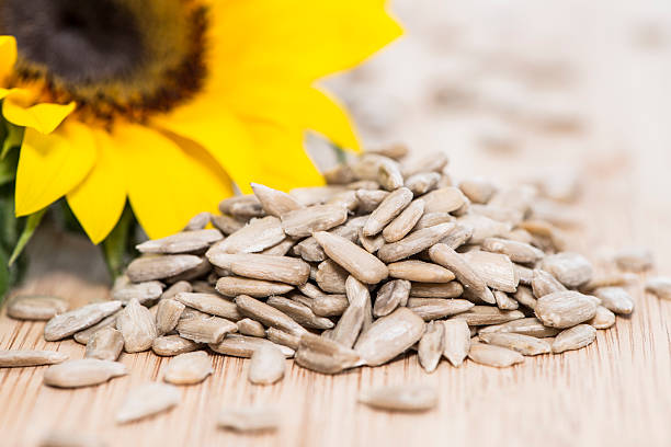 Sunflower with Seeds on wood stock photo