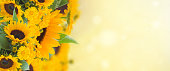 flowers garden with sunflowers and marigold flowers banner