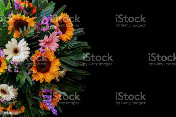 Sunflowers and gerbera daisies flower arrangement with fern and palm picture id939210122?b=1&k=6&m=939210122&s=612x612&h=l cprinosbaf2vthomeuler 5ghrnbpywj 2icmaxgm=
