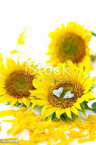 istock sunflower's bouquet and heart 971190206