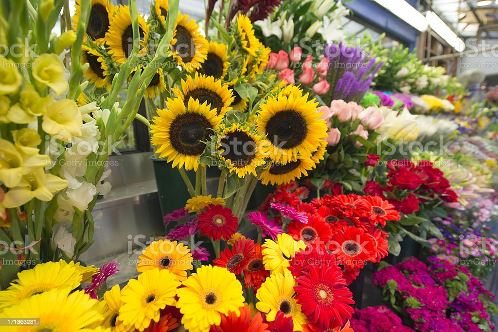 Sunflowers For Sale at Flower Market Stand New York City stock photo