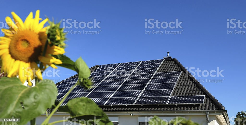 Sunflowers in front of solar panels royalty-free stock photo