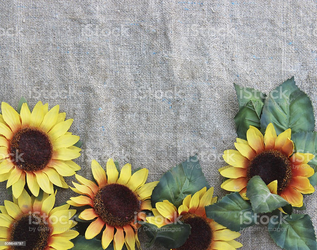 Sunflowers on fabric royalty-free stock photo